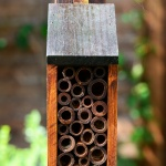 insect-hotel--®Pixabay (2)