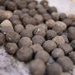 bombes à graines