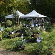 Journees-plantes-art-au-jardin_2017 (18)